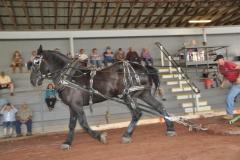 cummington fair fri 08-25-17 014