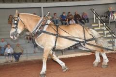cummington fair fri 08-25-17 021